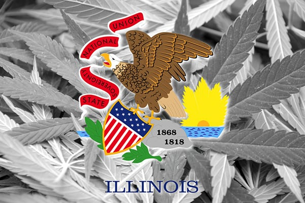 Flag of Illinois on cannabis background